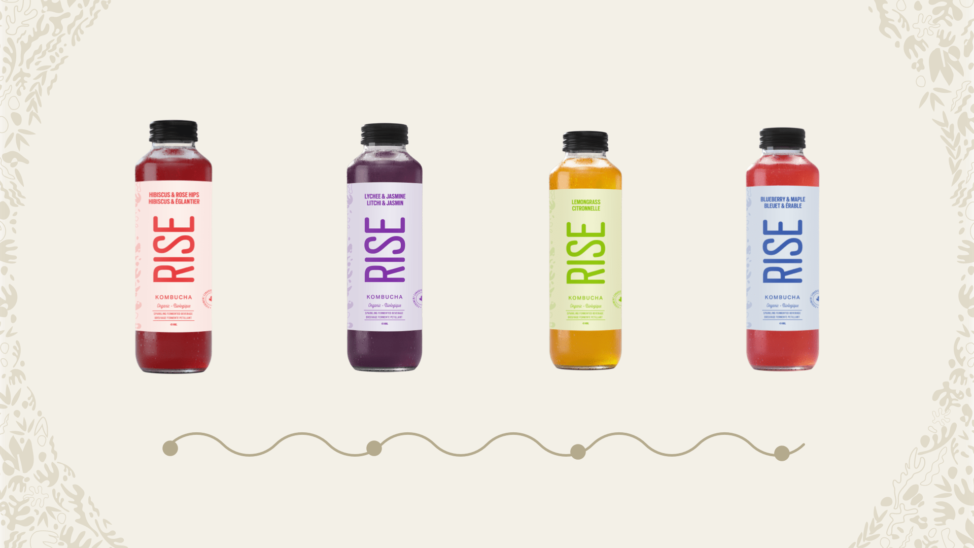 four flavours of RISE kombucha