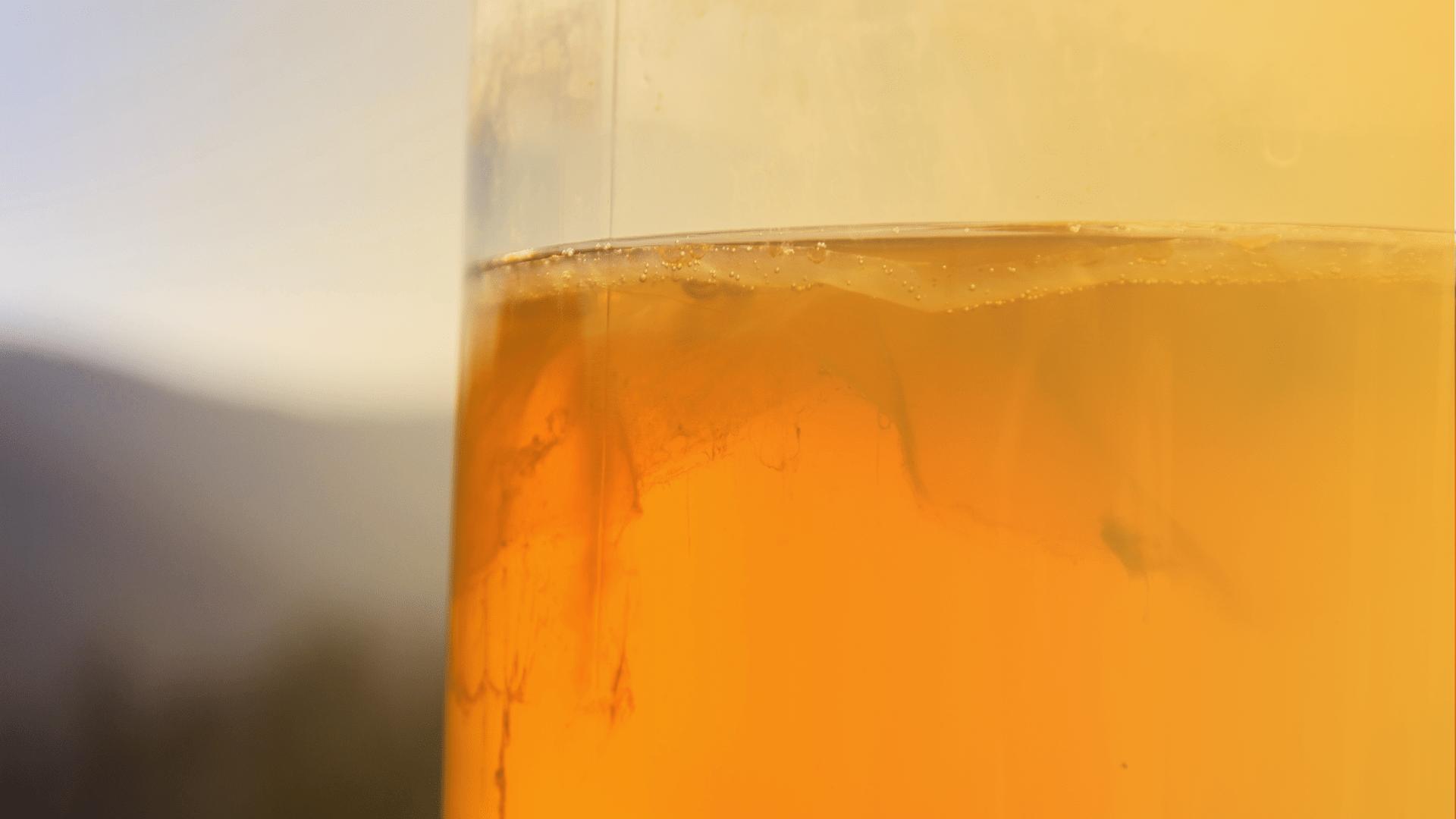 close-up of a glass of kombucha